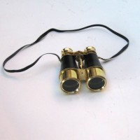 Brass Binocular Leather Mounted